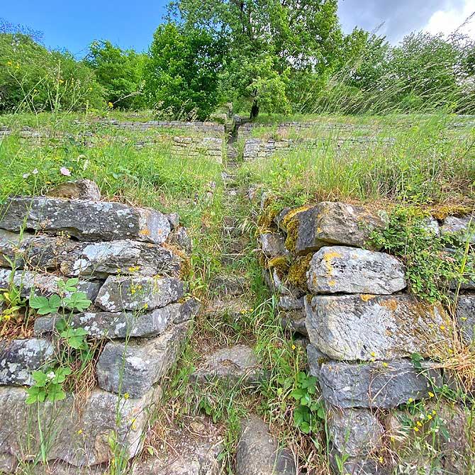 Weinberg Treppenstufen hoch zur Ruine Blankenstein