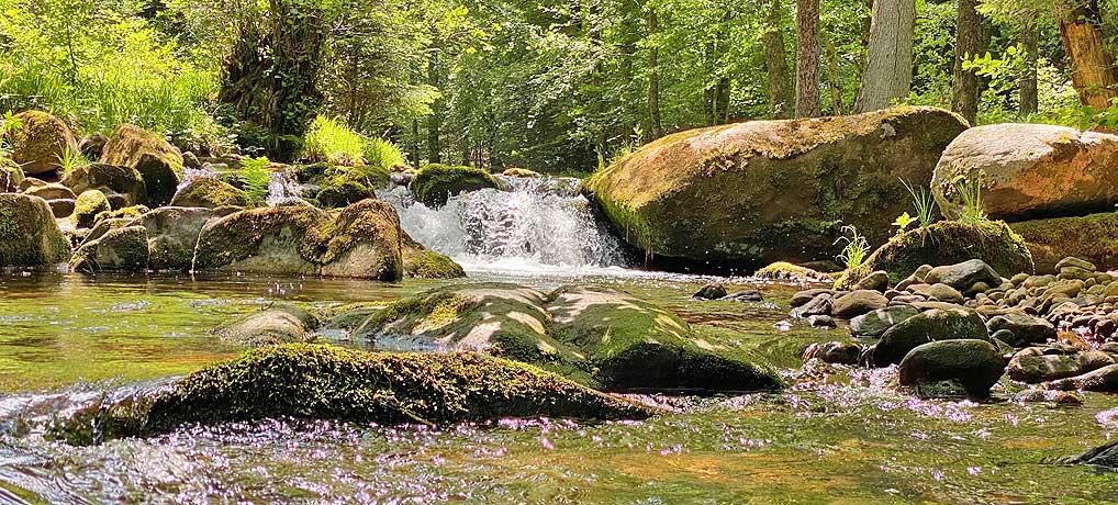 Das Eyachtal bei Dobel bietet eine schöne Wanderung im Schwarzwald