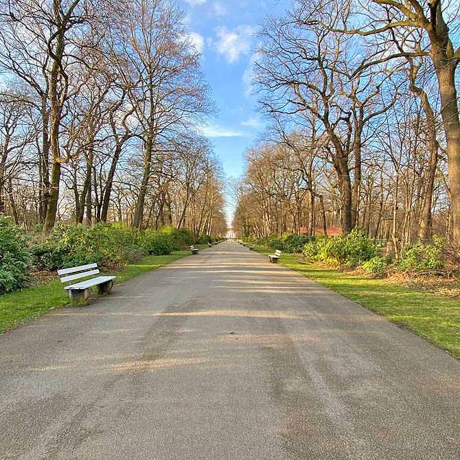 Parkweg zu Schloss Friedrichsfelde