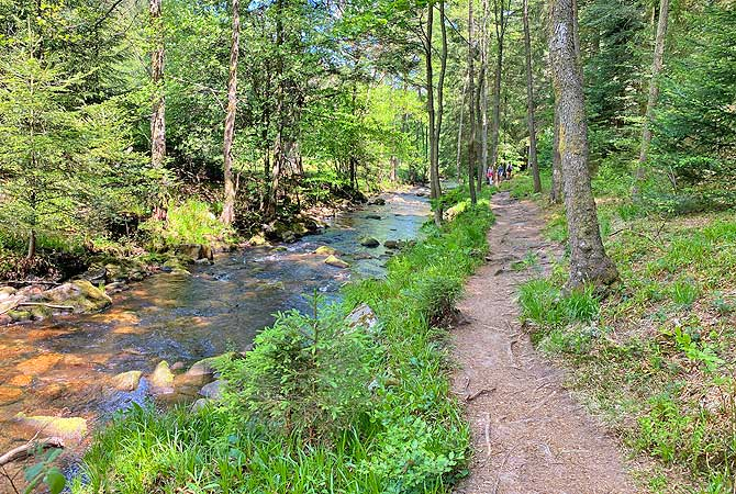 Wasserweg Dobel Schwarzwald