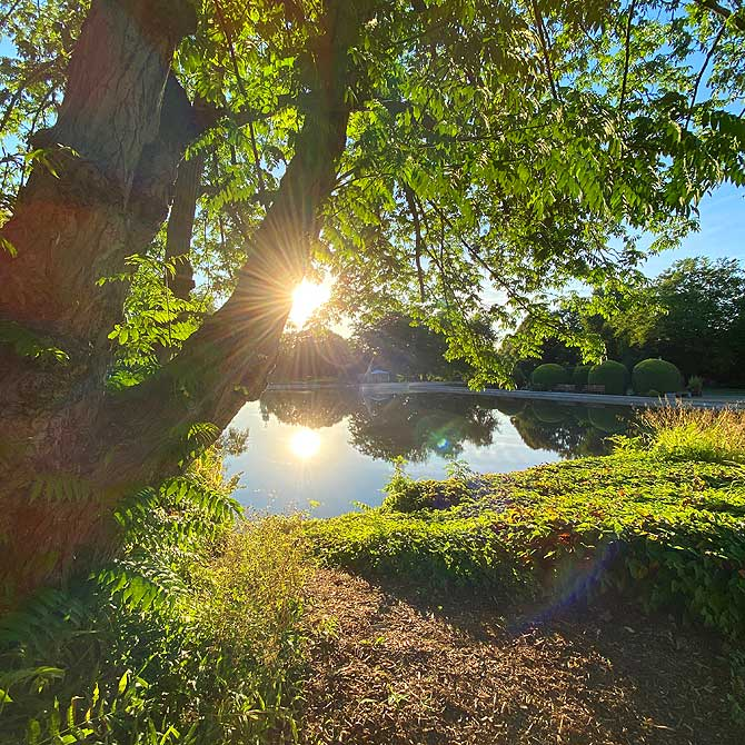 Sonne im Grugapark