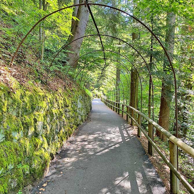 Panoramaweg Triberger Wasserfälle