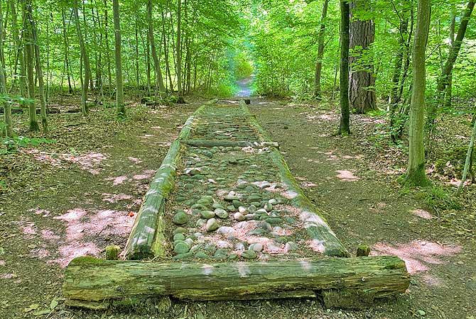 Barfusspfad Schlater Wald