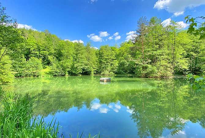 Weilerbach-See