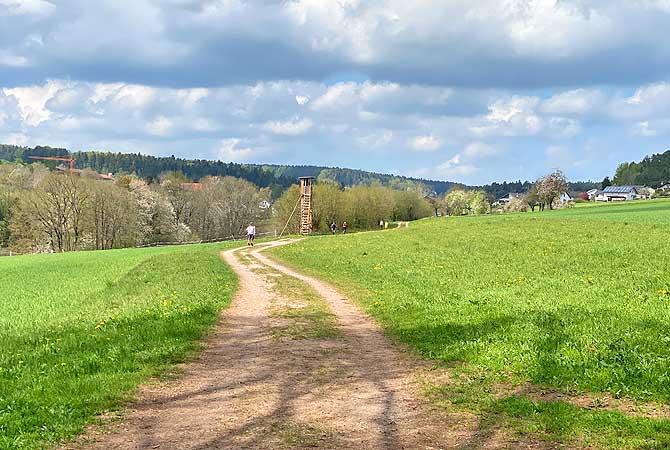 Weg nach Speßhardt bei Calw