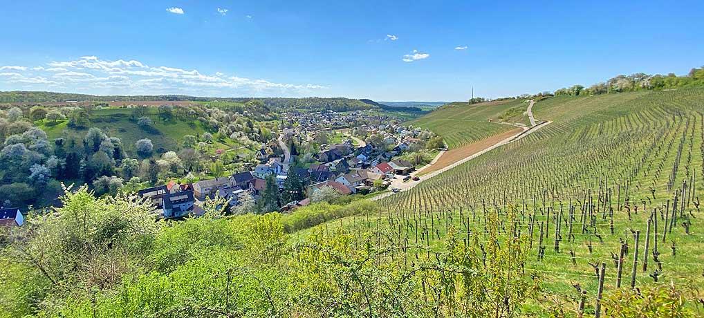Ausblick auf die Weinberge auf dem Panoramaweg Freudenstein Hohenklingen