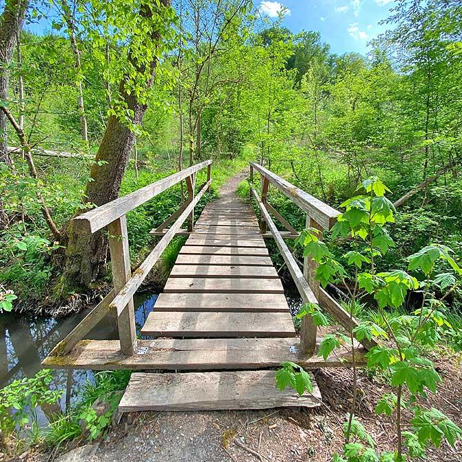 Brücke im Sulzbachtal