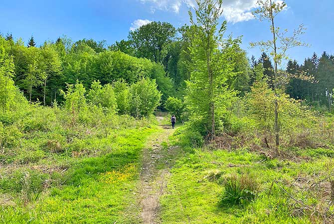 Wanderung bei Schönaich