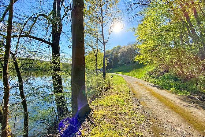 Seeweg Tiefer See Maulbronn