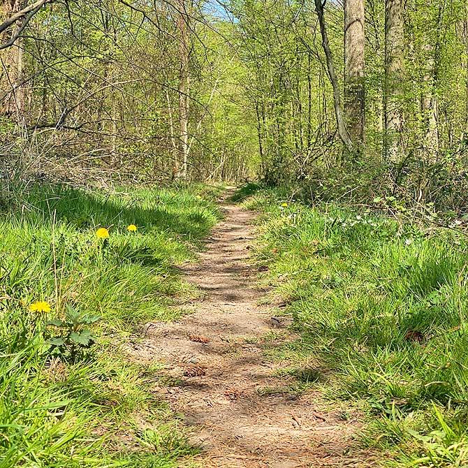 Wandern im Naturpark Stromberg