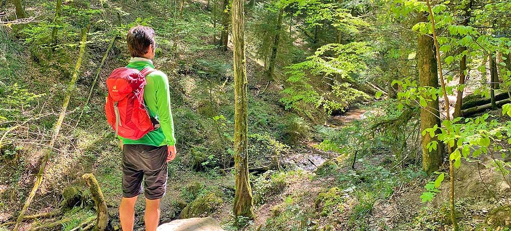 Die Hörschbachschlucht bei Murrhardt ist ein top Ausflugsziel im Schwäbischen Wald