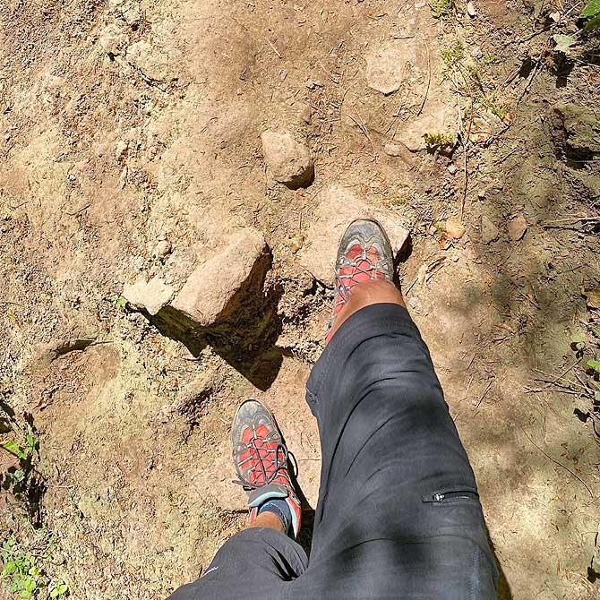 Diese Bodenbeschaffenheit hat der Wanderweg