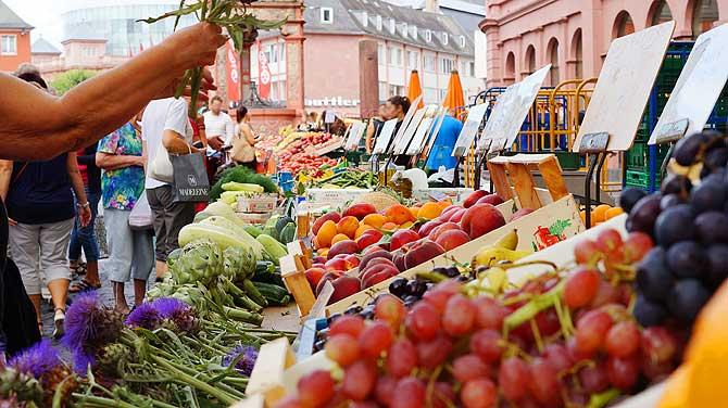 Gemüsestand auf dem Mainzer Markt
