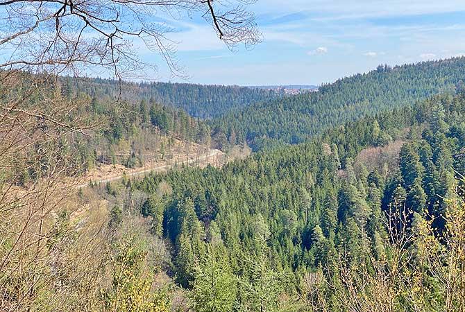 Ausblick vom Oechsle Pavillon auf den Schwarzwald