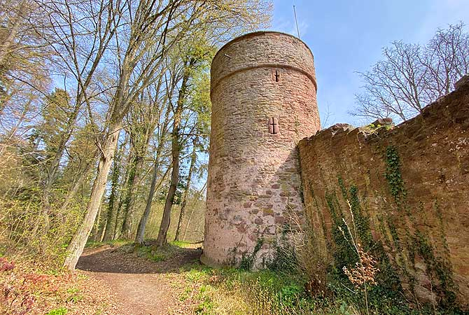 Turm der Oberburg von Steinegg in Neuhausen