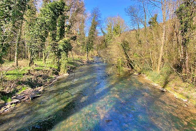 Hier fließt der Fluss Würm