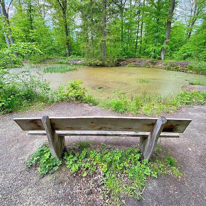 Weiher im Naturpark Schönbuch