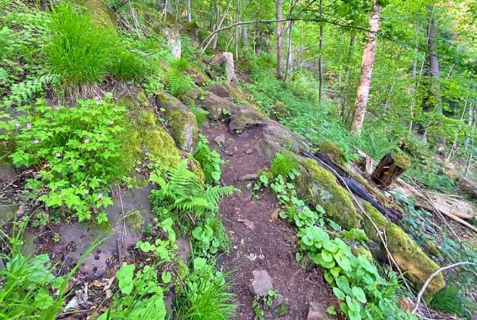 Toter Weg wandern bei Calw im Schwarzwald