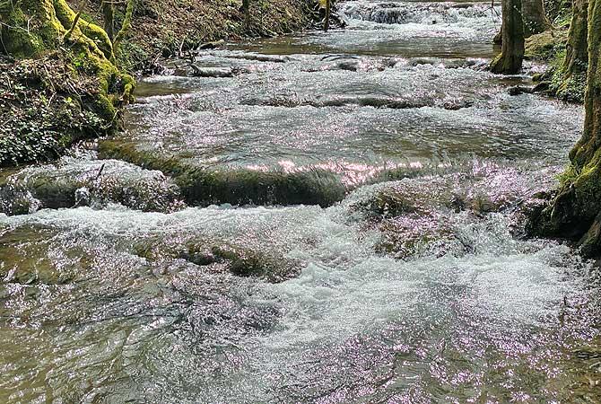 Hier sprudelt der Fluss Fils